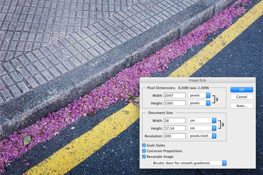 descubra-cuantos-pixeles-de-ancho-tiene-una-fotografia